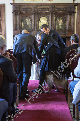 Wedding-Photography-at-Christchurch-Mansion,-Ipswich.-132